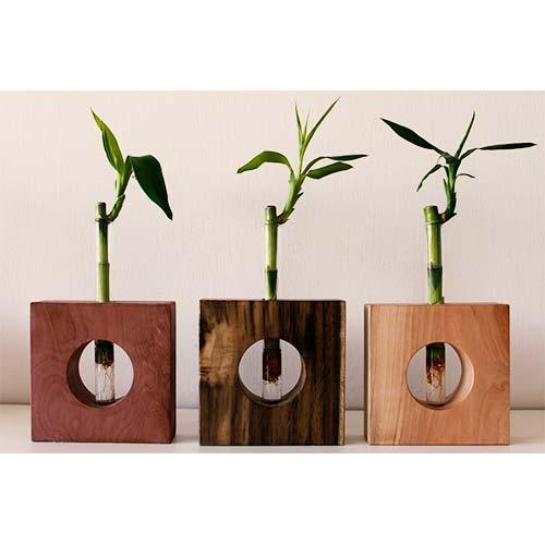 reciclan-kruz-toca-madera-2