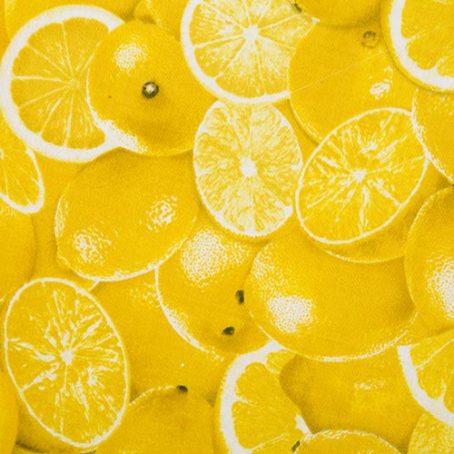 recicla-hokka-paul-limon-4