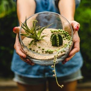 reciclan-the-planter-3