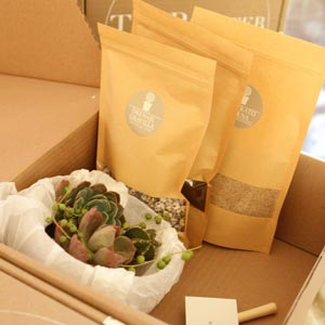 reciclan-the-planter