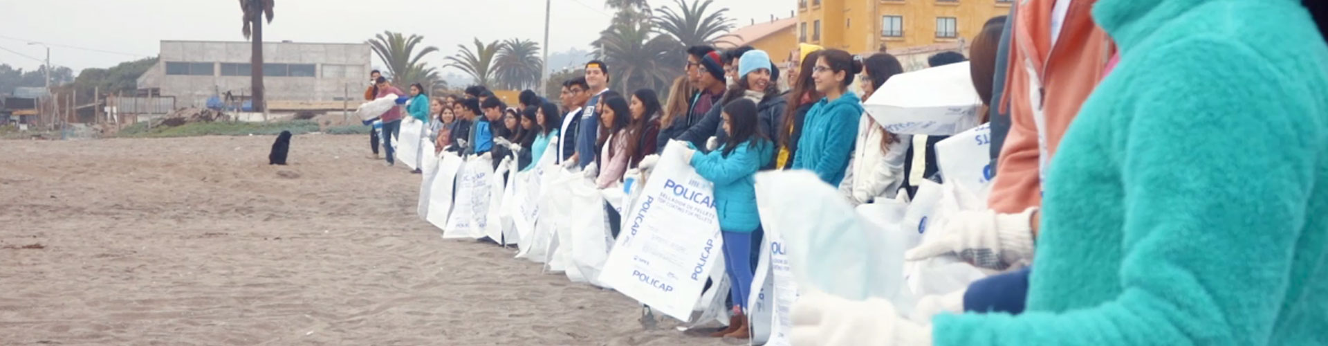 reciclan-dia-del-oceano-banner-1